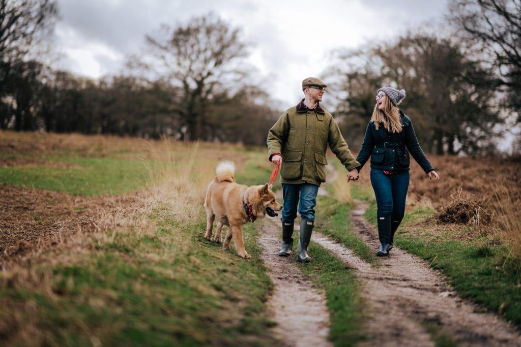 Dog - Dog walking